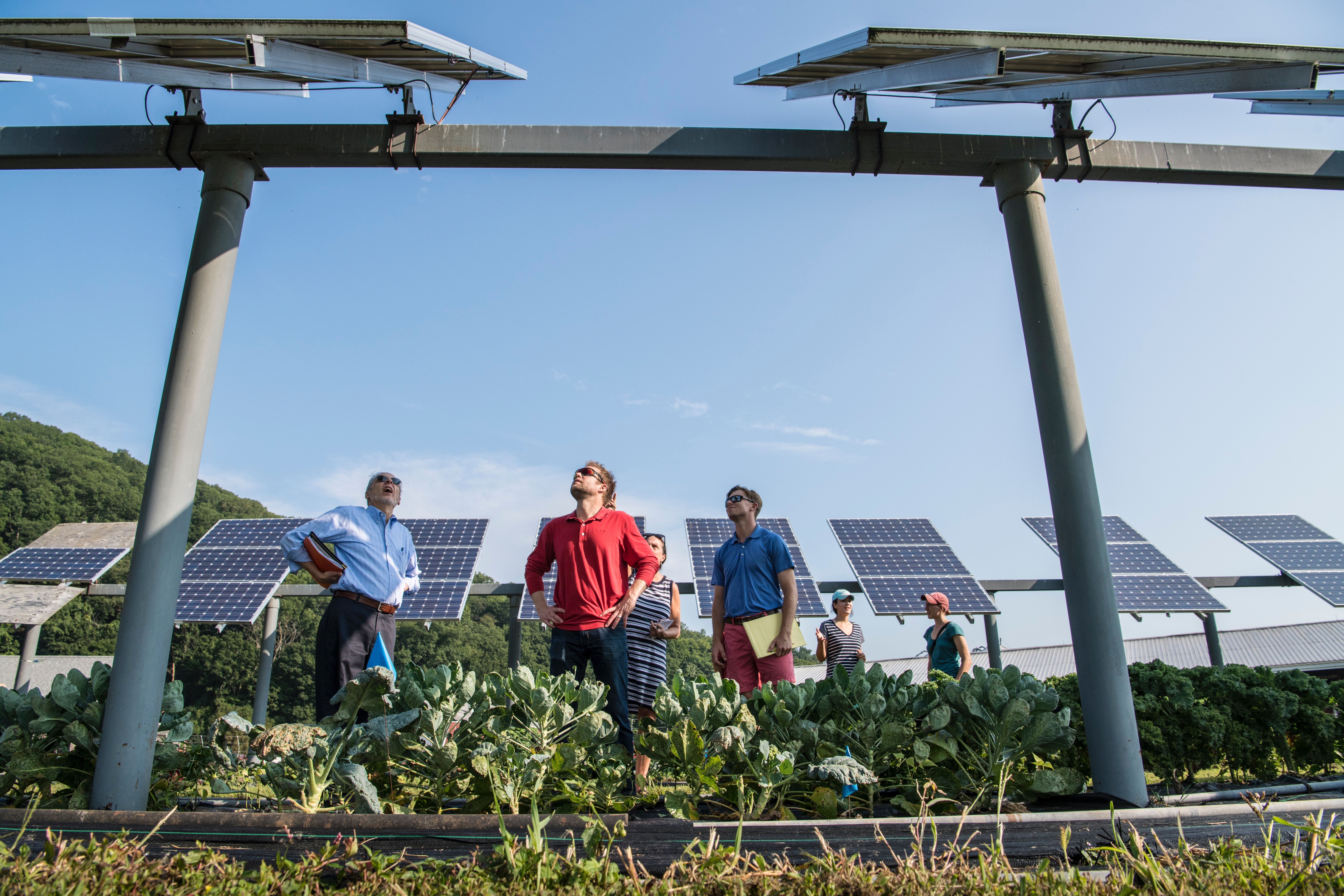 why-solar-solar-supply-installations-green-energy